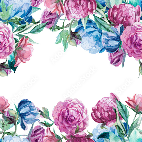 wreath of peonies isolate on white background