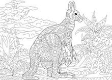 Stylized Australian Kangaroo Family - Mother And Her Young Cub In Jungle Landscape. Freehand Sketch For Adult Anti Stress Coloring Book Page With Doodle And Zentangle Elements.