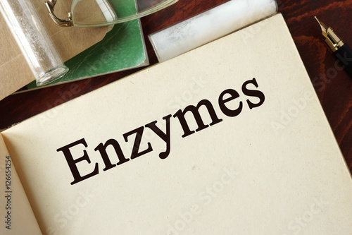 Enzymes written on a page. Chemistry concept. Wallpaper Mural