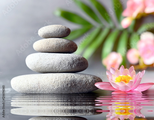 Photo Stands Water lilies stones balance with flower lily on grey background