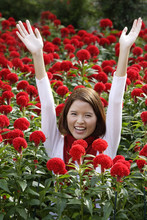 Young Woman Among Red Flowers ...