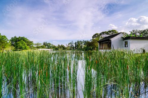 Fotografia, Obraz  Pavilion of Bonsai Garden