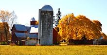 Rural Farm Framed With Golden ...