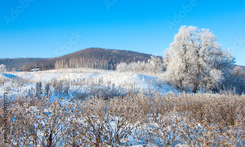 Foto op Aluminium Blauw inter river fog frost. The coldest time of year. Permanent water