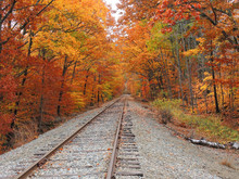 Train Lines In A Fall Setting Near The Kancamagus Highway.