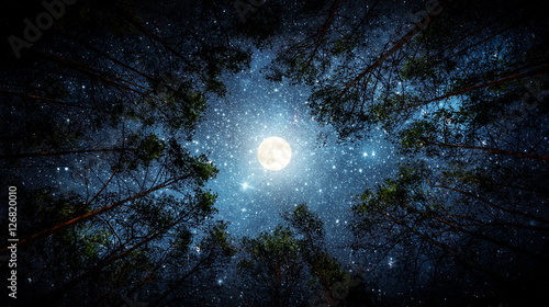 In de dag Nacht Beautiful night sky, the Milky Way, moon and the trees. Elements of this image furnished by NASA.
