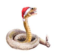 Christmas Snake In Red Santa's...