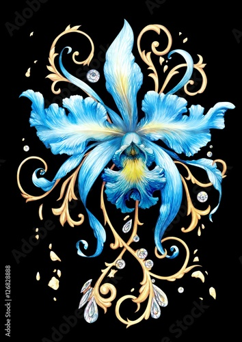 Blue orchid - 126828888
