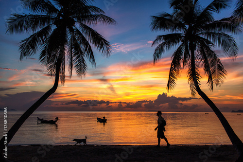 Poster Lieu connus d Asie a man and doggy silhouette on the sand beach under palm trees