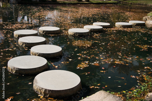 Fotografie, Obraz  Japanese Garden Stepping Stones
