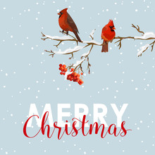 Merry Christmas Card - Winter Birds With Rowan Berries Banner