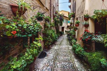 Fototapeta Zaskakujące wygląd ulic pełnych kwiatów w Spello, umbr