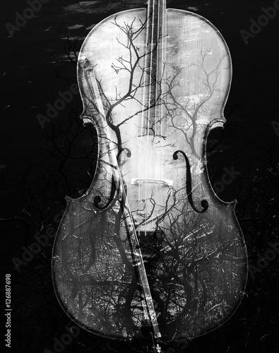 Obraz na płótnie Cello with nature overlay