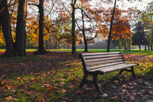 Bench In A Park With Colorful Leaves And Trees In Autumn At Sunset