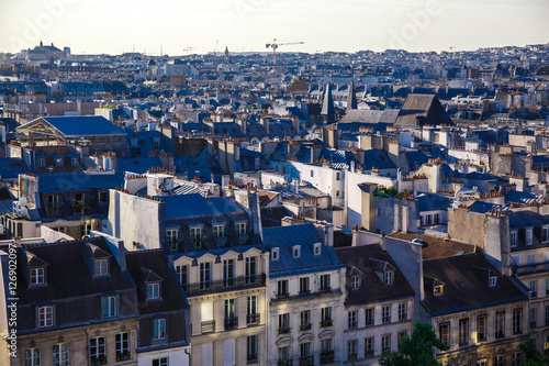 Poster Violet The rooftops of Paris