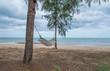 Tie the tree hammock by the sea