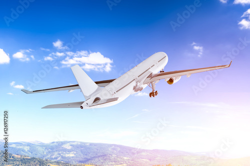 Fotografie, Tablou  Airplane flying concept.