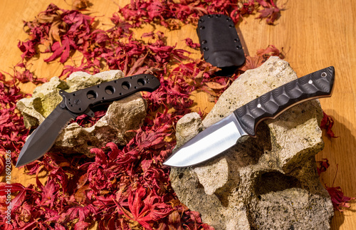 Photo  Pair of excellent stainless outdoor or army knife