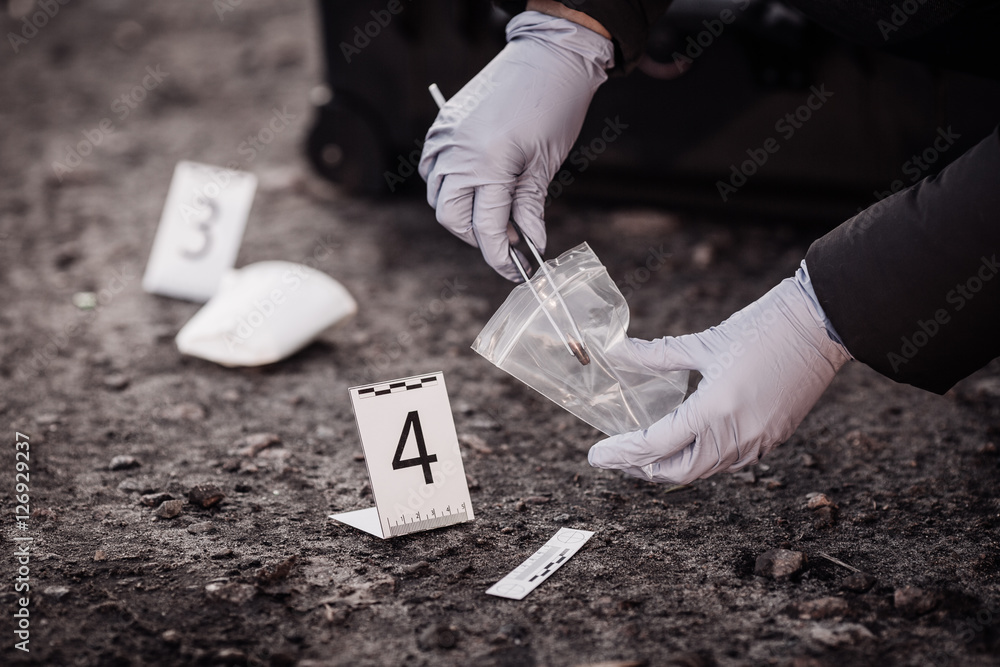 Fototapeta Crime scene investigation - collecting evidence .