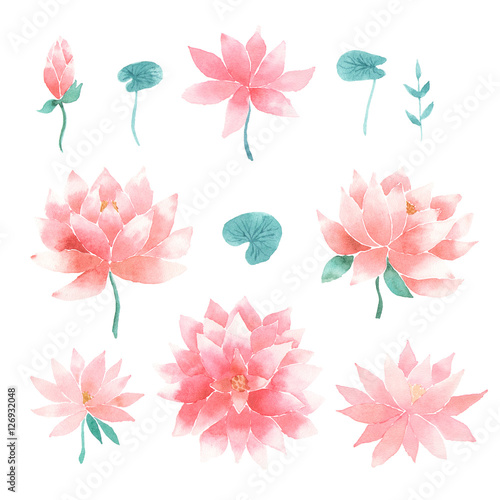 Watercolor Floral Set With Lotus Flowers Buy This Stock