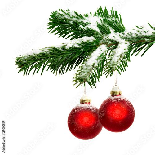 Foto-Doppelrollo - Zwei Christbaumkugeln hängen an einem Tannenzweig (von eyetronic)