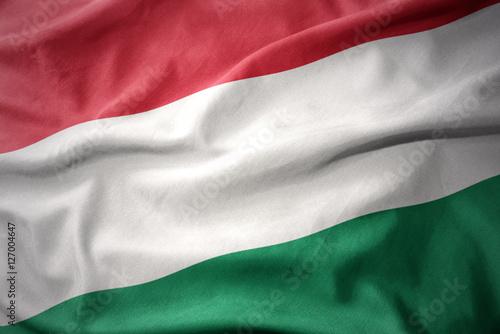 Staande foto Noord Europa waving colorful flag of hungary.