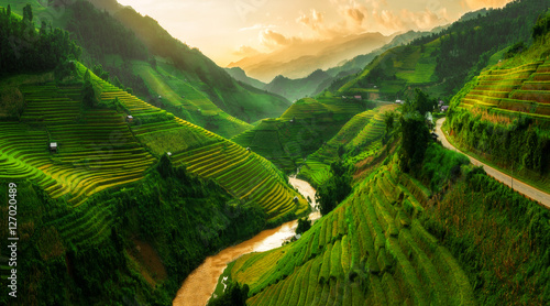 Fotoposter Rijstvelden Terraced rice field in Mu Cang Chai, Vietnam