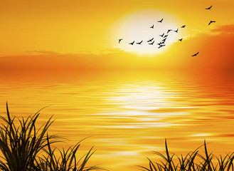 Fototapeta zachód słońca i piaki