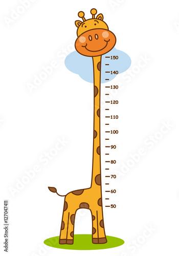 Fotografie, Obraz  meter wall giraffe