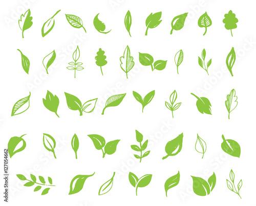 Zbiór wyciągnąć rękę liści, zielony liść, szkice i gryzmoły liści i roślin, zielone liście wektor zbiory