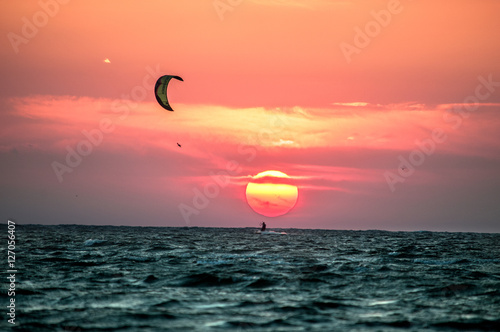 Poster Corail Kiter on sunset