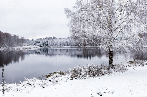 Valokuva  White winter landscape lake in the forest