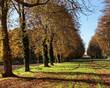 Parce de Versailles