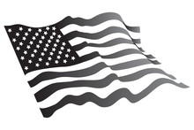 American Flag Vector Color Grayscale