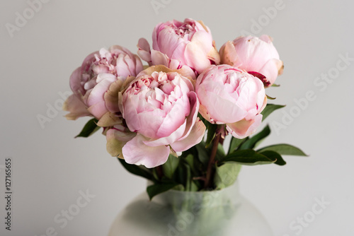 Fotografie, Obraz  Close up of pink peonies in glass vase against neutral background (selective foc
