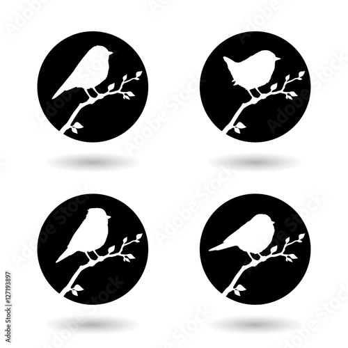 Fotografie, Obraz  Vector collection of bird silhouettes