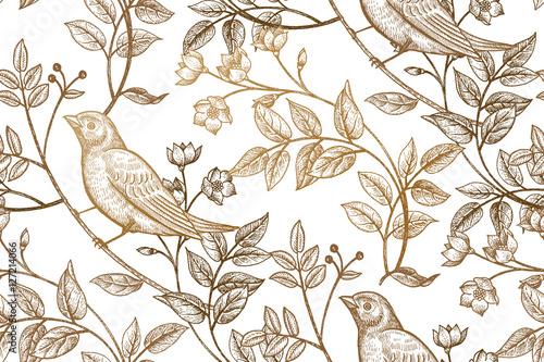 ilustracja-wektorowa-z-ptakami-i-roslinami