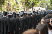 Rows Of Graduation In The Grad...
