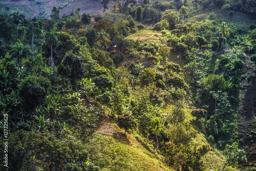 Hochland Haiti Fototapeta