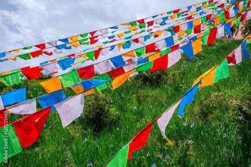 Foto op Plexiglas Texas Colorful buddhist praying flags by Mati Si temple, China