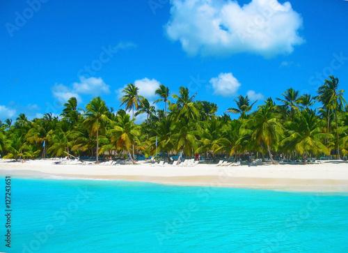 Foto op Plexiglas Caraïben Tropical beach in caribbean sea, Saona island, Dominican Republic