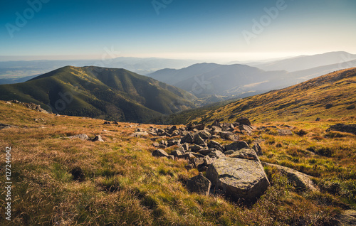 Fotobehang Heuvel Meadows and Hills in Low Tatra Mountains National Park, Slovakia in Summer.