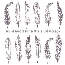 Set Of Hand Drawn Feathers For...