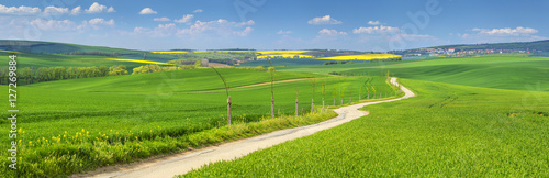 Foto op Aluminium Heuvel panorama with farm road in spring fields