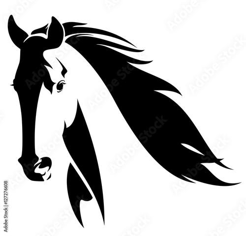 Foto  wild horse head black and white vector design