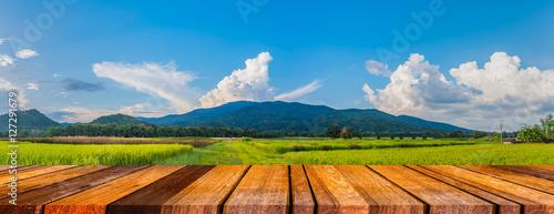 Foto auf Gartenposter Hugel beauty sunny day on the rice field .