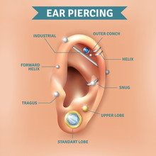 Ear Piercing Types Positions Background Poster