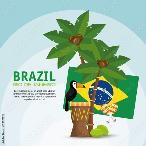 Photo  poster brazil macaw drum palm flag vector illustration eps 10