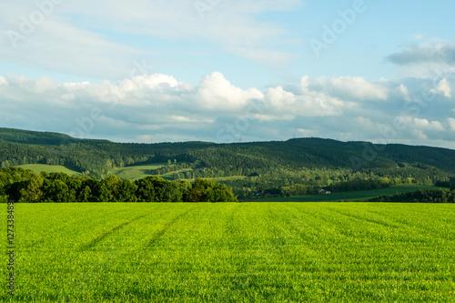 Fotografie, Obraz  Ausblick im Mittelgebirge