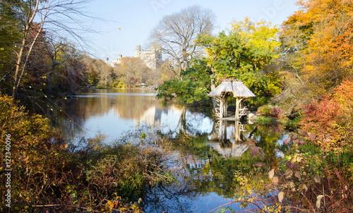 Foto op Canvas Herfst Central park autumn scene, New York